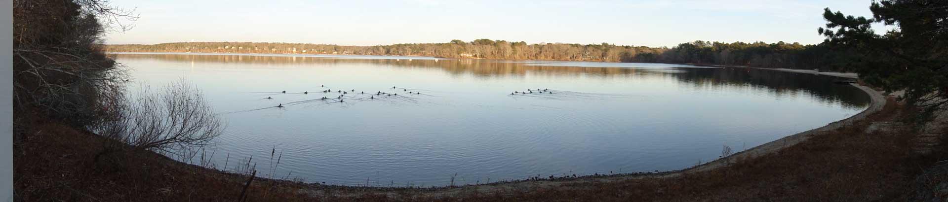 Pan image of Ashumet Pond by Joan Bates